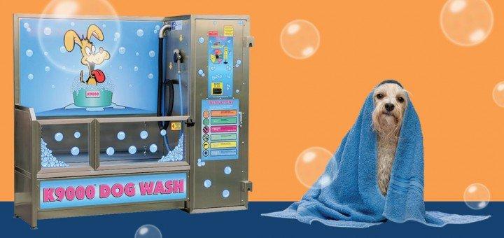 Dog-Wash-720x340